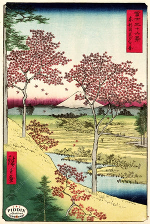 Pdxc1061 -- Japanese Woodblocks 1850S Color Illustration