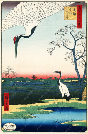 PDXC1062 -- Japanese Woodblocks 1850s Color Illustration