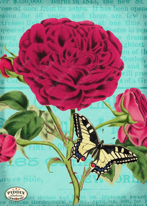 Pdxc10874 -- Original Flower Collages Original Collage