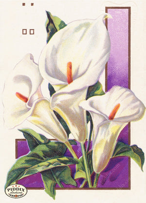 Pdxc10921-- Easter Postcard