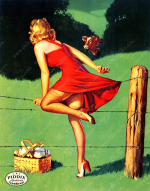 Pdxc14386 -- Pin-Ups Color Illustration