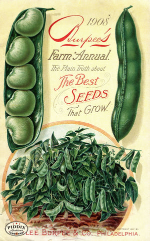 Pdxc1480 -- Fruit & Vegetable Seed Catalogs Color Illustration