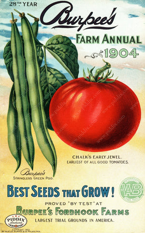 Pdxc1481 -- Fruit & Vegetable Seed Catalogs Color Illustration