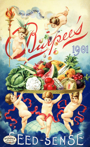Pdxc1483 -- Fruit & Vegetable Seed Catalogs Color Illustration