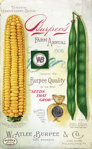 Pdxc1486 -- Fruit & Vegetable Seed Catalogs Color Illustration