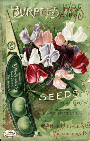 Pdxc1489 -- Fruit & Vegetable Seed Catalogs Color Illustration