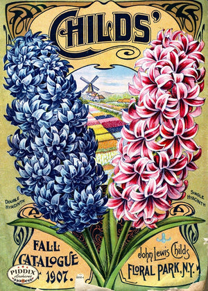Pdxc1492 -- Flower Seed Catalogs Color Illustration