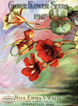 Pdxc1524 -- Flower Seed Catalogs Color Illustration
