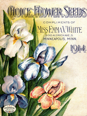Pdxc1529 -- Flower Seed Catalogs Color Illustration