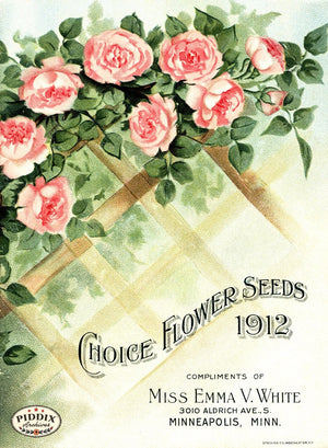 Pdxc1530 -- Vintage Rose Culture Catalogs Color Illustration