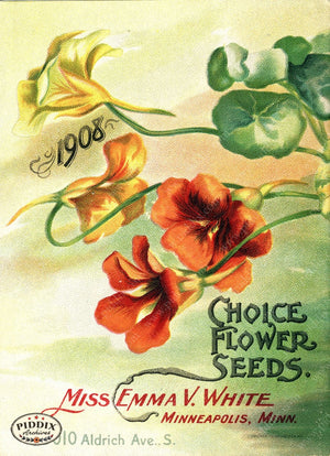 Pdxc1533 -- Flower Seed Catalogs Color Illustration
