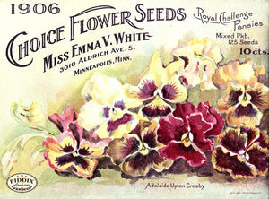 Pdxc1534 -- Flower Seed Catalogs Color Illustration