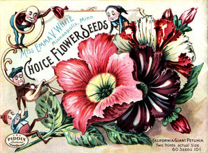 Pdxc1540 -- Flower Seed Catalogs Color Illustration