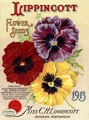 Pdxc1541 -- Flower Seed Catalogs Color Illustration