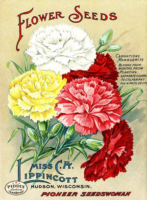Pdxc1542 -- Flower Seed Catalogs Color Illustration