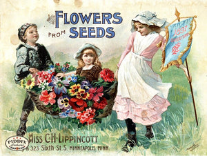 Pdxc1547 -- Flower Seed Catalogs Color Illustration