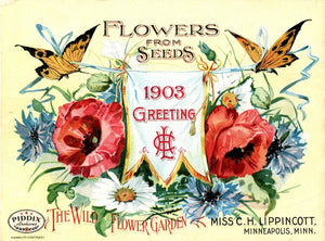 Pdxc1551 -- Flower Seed Catalogs Color Illustration