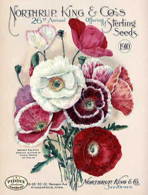 PDXC1558 -- Flower Seed Catalogs Color Illustration