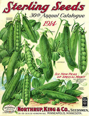 PDXC1561 -- Fruit & Vegetable Seed Catalogs Color Illustration
