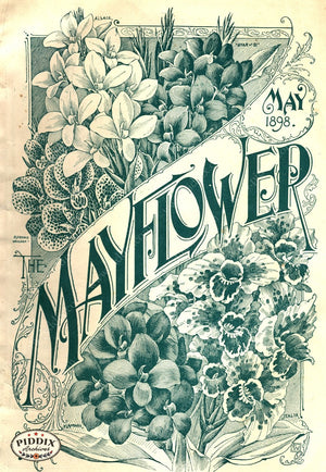 Pdxc1565 -- Flower Seed Catalogs Color Illustration