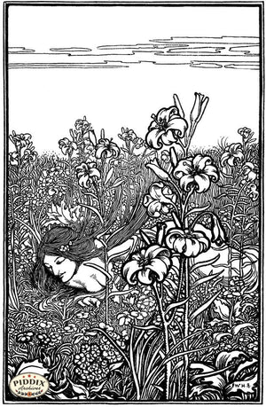 Pdxc15672-- Black & White Fairy Tales Black & White Engraving