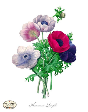 Pdxc18056B -- Bright Vintage Flowers Color Illustration