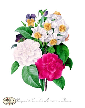 Pdxc18075B -- Bright Vintage Flowers Color Illustration