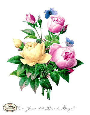 Pdxc18089B -- Bright Vintage Flowers Color Illustration