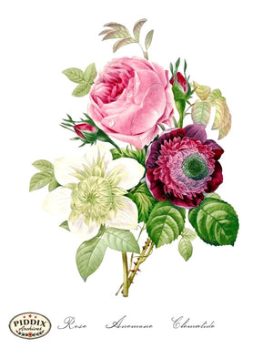 Pdxc18091B -- Bright Vintage Flowers Color Illustration