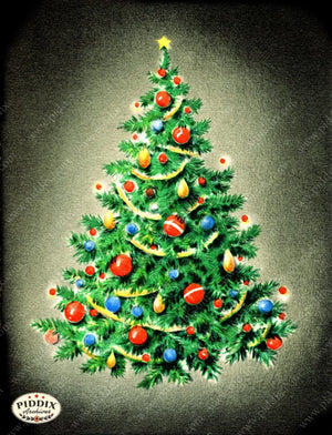 Pdxc18929A -- Christmas Trees Color Illustration