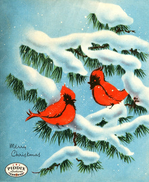 PDXC19175b -- Christmas Birds Color Illustration