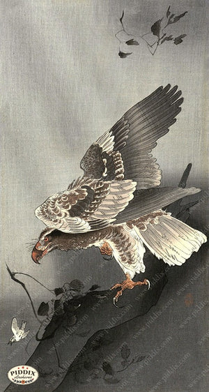 PDXC19532 -- Japanese Hawk Woodblock