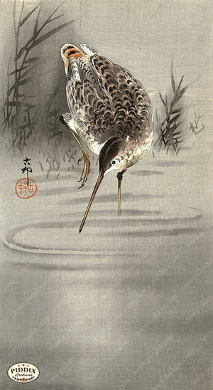 PDXC19537-- Japanese Bird Woodblock