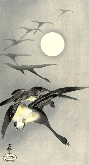 PDXC19538-- Japanese Birds and Moon Woodblock