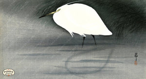 PDXC19541-- Japanese Bird Woodblock