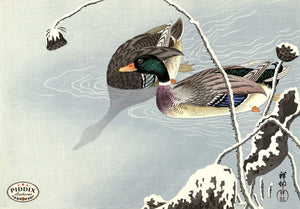 PDXC19547-- Japanese Ducks and Grass Woodblock