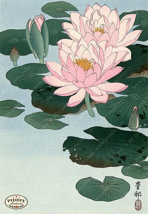 PDXC19550 -- Japanese Water Lily Woodblock