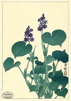 PDXC19551 -- Japanese Flowers and Leaves Woodblock