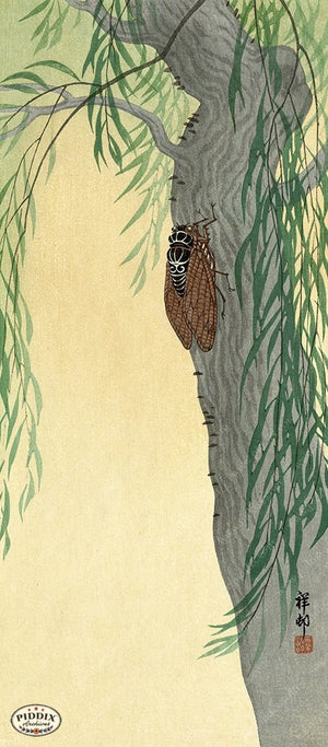 PDXC19555-- Japanese Cicada and Tree Woodblock