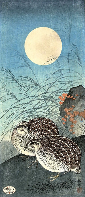 PDXC19560-- Japanese Birds and Moon Woodblock