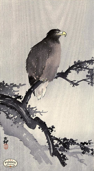 PDXC19568-- Japanese Eagle and Branch Woodblock