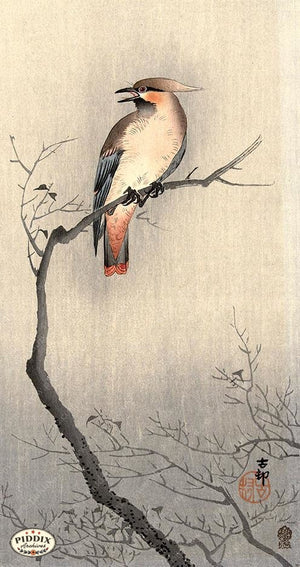 PDXC19572 -- Japanese Bird and Branch Woodblock