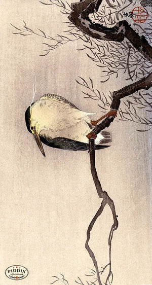 PDXC19575-- Japanese Bird and Branch Woodblock