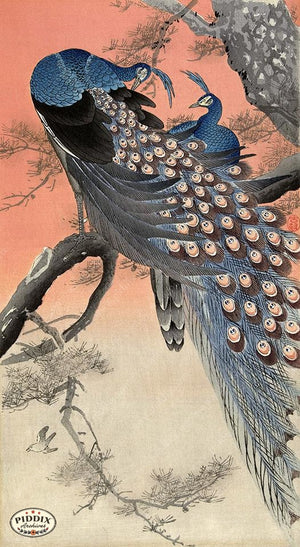 PDXC19577 -- Japanese Peacocks Woodblock