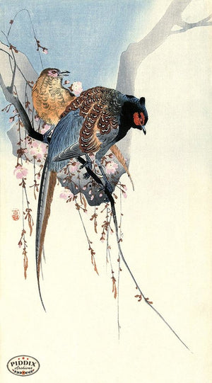PDXC19589-- Japanese Birds Woodblock