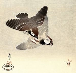 PDXC19592 -- Japanese Birds and Bee Woodblock