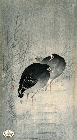 PDXC19617 -- Japanese Birds and Grass Woodblock