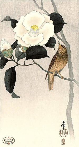 PDXC19625 -- Japanese Bird and Flower Woodblock