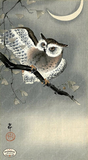 PDXC19629-- Japanese Owl and Moon Woodblock