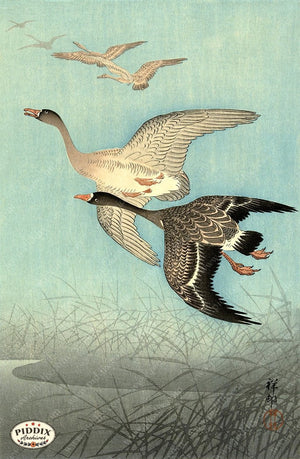 PDXC19655-- Japanese Geese Woodblock